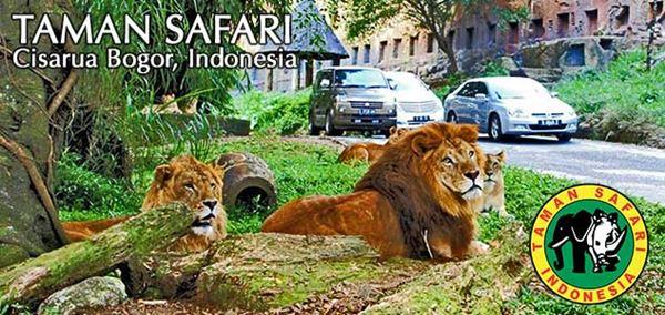 Taman Safari Indonesia II Sebagai Wisata Keluarga di Prigen