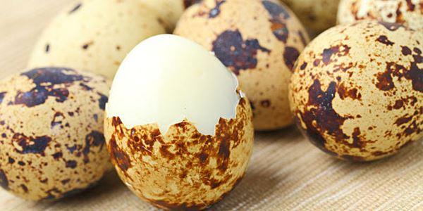 4 Manfaat Telur Puyuh yang Jarang diketahui