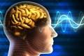 Penyebab Gangguan Fungsi Otak