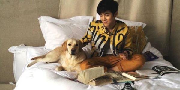 Jadi Bintang Iklan di Tiongkok, Luhan EXO Digugat SM Entertainment