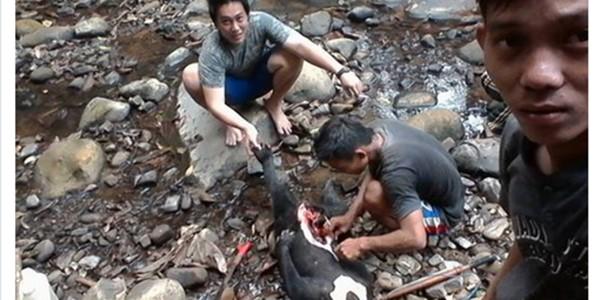Pamer Foto Beruang Madu Hasil Berburu, PNS Kukar Terancam Dipenjara