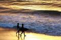 Pantai Harlem Surga Pecinta Snorkeling yang Cantik serta Eksotik