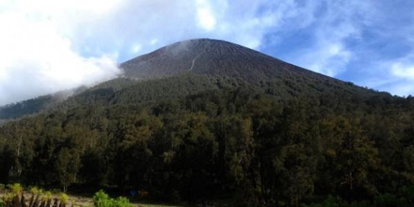 Pendaki Tak Padamkan Api Unggun, Penyebab Terbakarnya Gunung Semeru