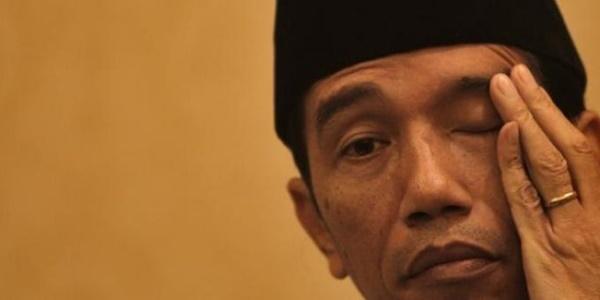 Catut Jokowi, Inilah Transkrip antara SN dan MS Soal Kontrak Freeport! 4