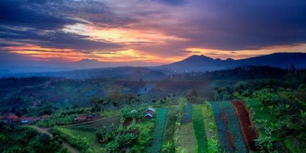 Bukit Moko, Bandung