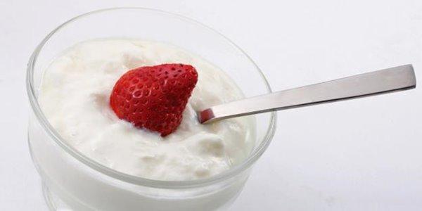 Inilah 3 Makanan yang Dapat Meningkatkan Produksi Sel Darah Putih manfaat kandungan serta khasiat yoghurt