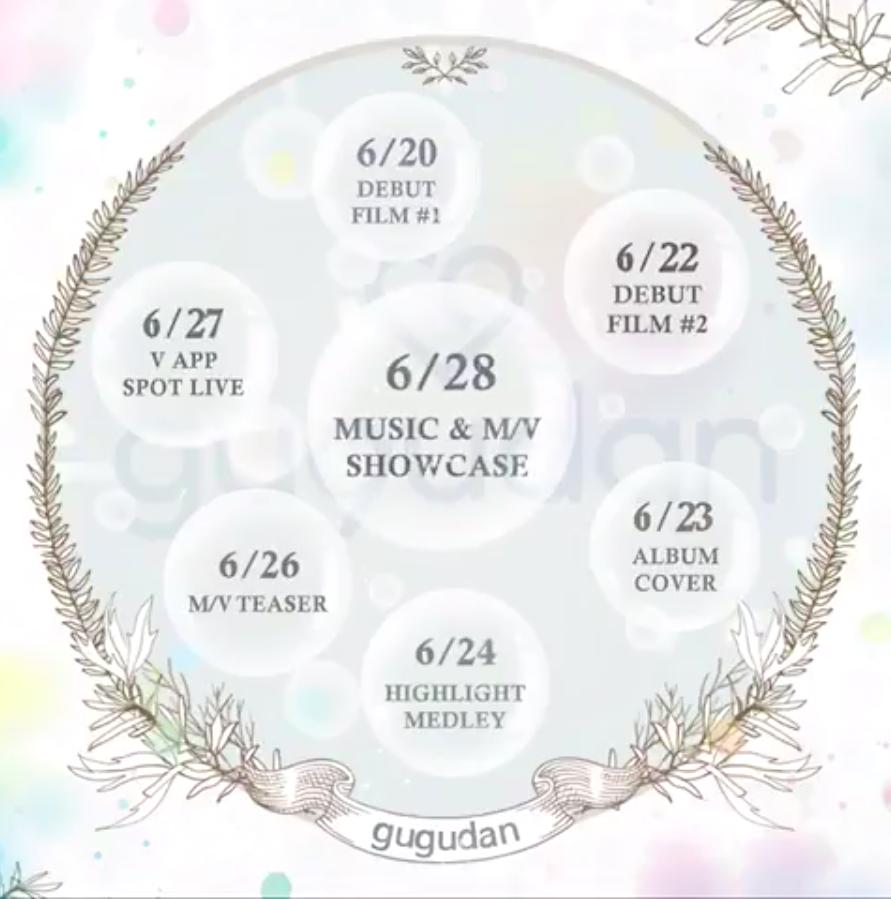 tanggal debut dan timeline