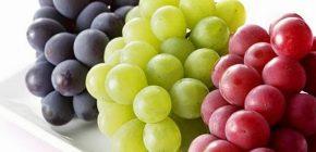 10 Manfaat Buah Anggur Hijau, Merah dan Hitam yang Perlu Anda Ketahui