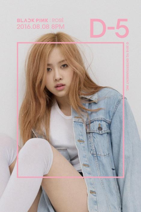 Rose-black-pink-teaser-debut