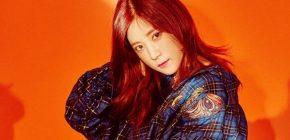 A Pink Merilis Teaser Individu Chorong Untuk 'Pink Revolution'