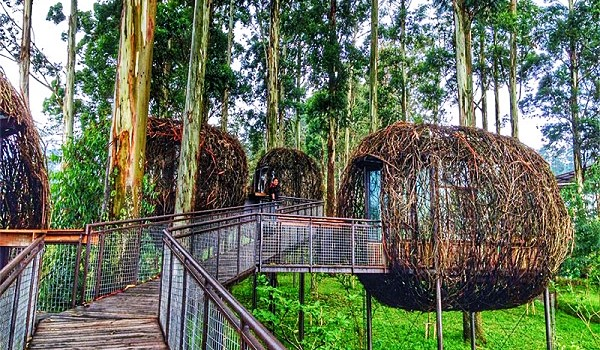 Mengenal Dusun Bambu, Tempat Wisata Unik dan Instagramable di Bandung 2