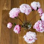 7 Inspirasi Kreasi Bunga untuk Mempercantik Ruangan 7