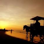 Tempat Wisata Jogja Pantai Parangtritis