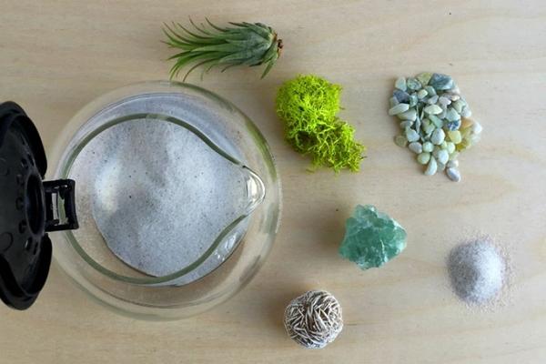 bahan bahan membuat terrarium