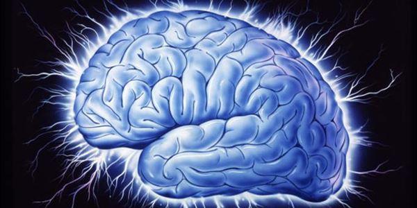 Mengenal Radang Selaput Otak atau Meningitis, Penyakit yang Diderita Olga Syahputra