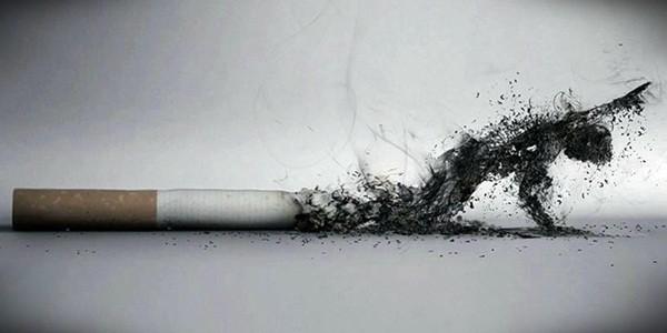 Hindari Rokok Demi Jantung