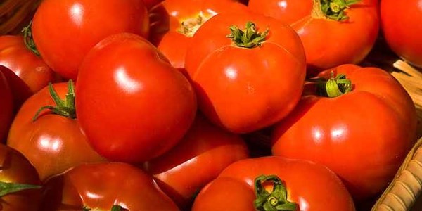 Tampil Muda Tanpa Keriput dengan Tomat