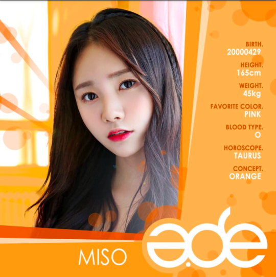 Miso-A.DE_-540x542